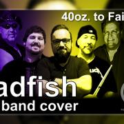 Badfish (Sublime cover by Rob Kosinski)
